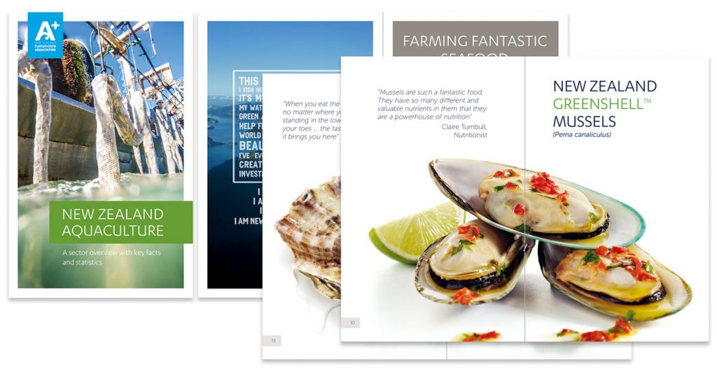 Design projects includes booklet for AQNZ by Revell design